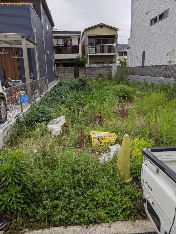 【水戸市】草刈りご依頼 お客様の声